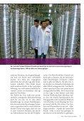 Download - Hanns-Seidel-Stiftung - Seite 7
