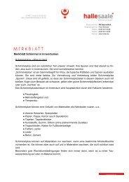 Schimmel in Innenräumen - (eM 53-015) Merkblatt - Stadt Halle ...