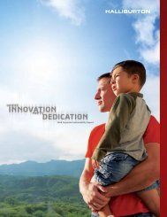 2008 Corporate Sustainability Report - Halliburton