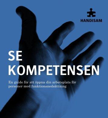 Guiden i pdf-format - Handisam