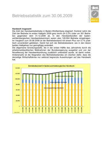 Betriebsstatistik zum 1. Halbjahr 2009