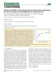 Rhenium Solubility in Borosilicate Nuclear Waste Glass - Hanford Site