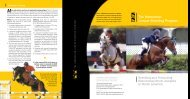 The Hanoverian Jumper Breeding Program - the American ...