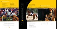 Brochure - the American Hanoverian Society!