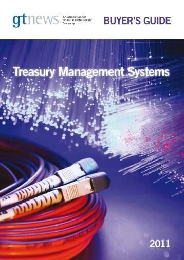 A Buyer's Guide to Treasury Management Systems - Hanse Orga AG
