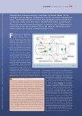 download .pdf - HANSER automotive - Page 2