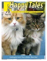 Looking for Love? Two is Better Than One! - Happy Tails - Pet ...