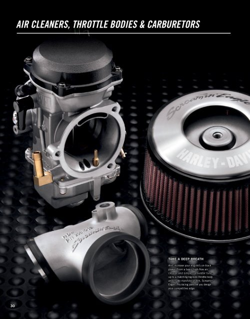 AIR CLEAnERS, thRottLE boDIES     - Harley-Davidson