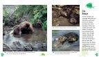 leseprobe - Hase und Igel Verlag - Seite 2