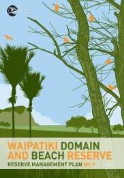 waipatiki domain and beach reserve - Hastings District Council