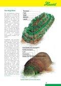 Gartenfibel»: Natürlich Düngen - Seite 2