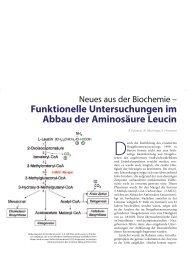 funktionelle untersuchungen im Abbau der ... - Hauner Journal