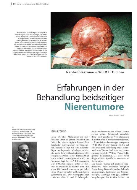 Nierentumore - Hauner Journal