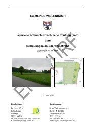 (saP) zum Bebauungsplan Edelweißstraße - Gemeinde Wielenbach