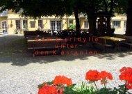 Sommeridylle unter den Kastanien - Haus Schlesien