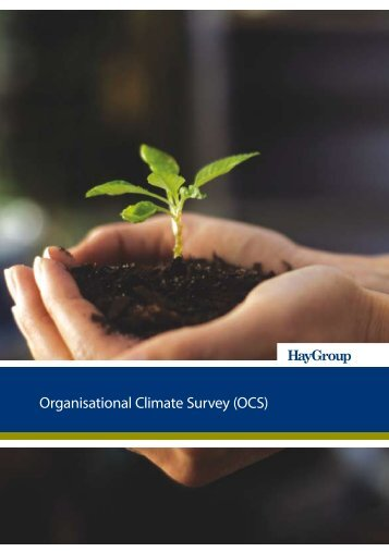 Organisational Climate Survey (OCS) - Hay Group