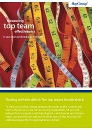 top team - Hay Group