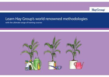 Learn Hay Group's world renowned methodologies