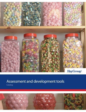Assessment and development tools - Hay Group