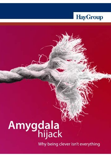 Amygdala Hijack - Hay Group