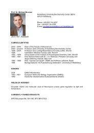 Prof. Dr. Michael Brunner Heidelberg University ... - HBIGS