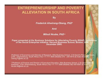 entrepreneurship and poverty alleviation in south africa - Harvard ...
