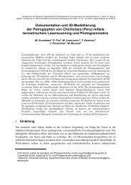 Dokumentation und 3D-Modellierung der Petroglyphen von ...