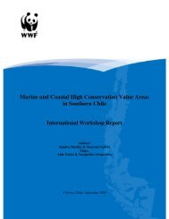 Marine and Coastal High Conservation Value Areas in Southern Chile