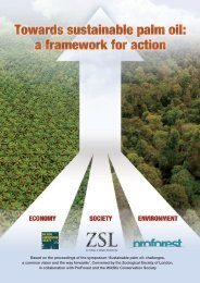 Towards sustainable palm oil: a framework for action - Zoological ...