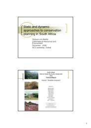 Static and dynamic approaches to conservation planning in South ...