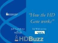"""How the HD Gene works"""