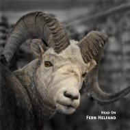 Fern Helfand Head On Catalogue - Headbones Gallery