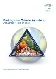 Realizing a New Vision for Agriculture - RAI Knowledge Exchange ...
