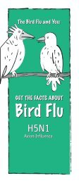 The Bird Flu and You - New York State Department of Health