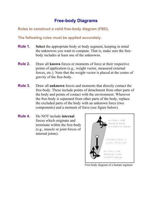 Rules For Free Body Diagrams