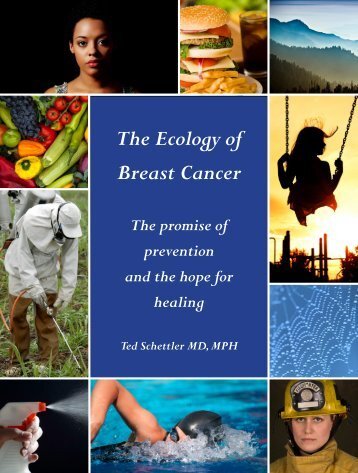 The Ecology of Breast Cancer - Collaborative on Health and the ...