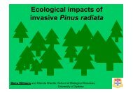 Ecological impacts of invasive Pinus radiata
