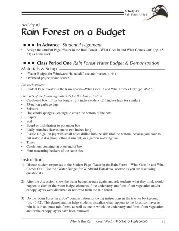 Rain Forest on a Budget