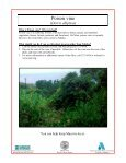 Poison vine (Derris elliptica) - Hawaiian Ecosystems at Risk project - Page 2