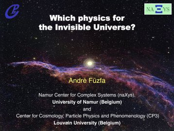 Which physics for the Invisible Universe?