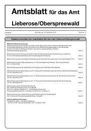 Nummer 12 vom 18. Dezember 2010 - im Amt Lieberose ...