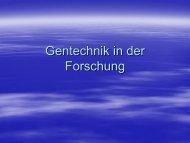 Gentechnik in der Forschung - Helmholtz Gymnasium Bonn