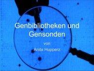 Genbibliothek und Gensonden - Helmholtz Gymnasium Bonn