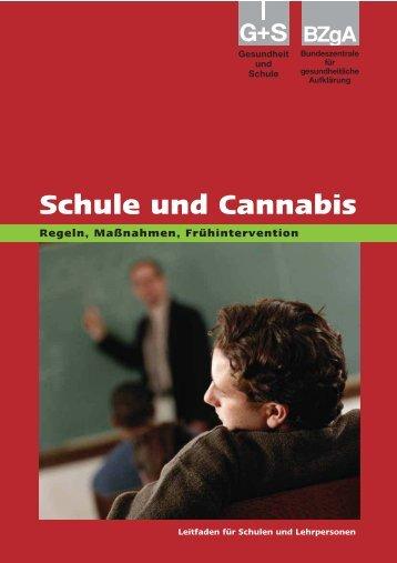 Schule und Cannabis - Helmholtz Gymnasium Bonn
