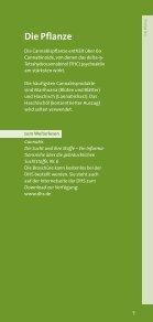 Cannabis Basisinformation - Helmholtz Gymnasium Bonn - Seite 7