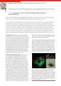 Mykobakterielle Phagosomen und angeborene Immunität - Seite 2