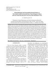 Histopathological and Immunohistochemical Studies on ... - Idosi.org