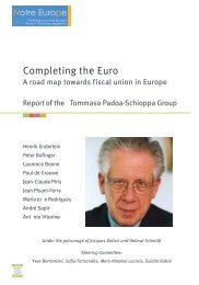 Completing the Euro
