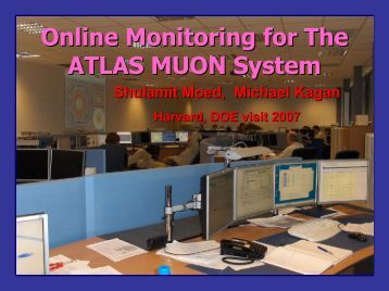 Online Monitoring for The ATLAS MUON System