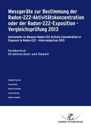 Vergleichsprüfung 2013 Instruments to Measure Radon ... - DORIS